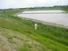 河川敷周辺清掃活動